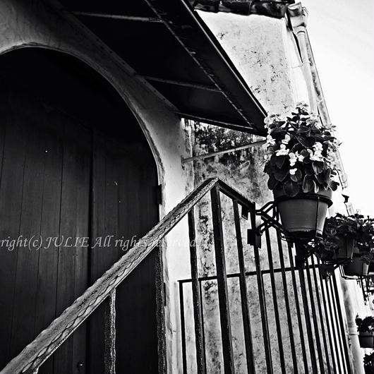 JULIE's Photo Monochrome-218