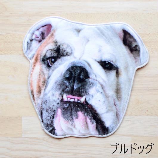 REALISTIC MOTIF TOWEL DOG/リアルモチーフハンドタオル ブルドッグ