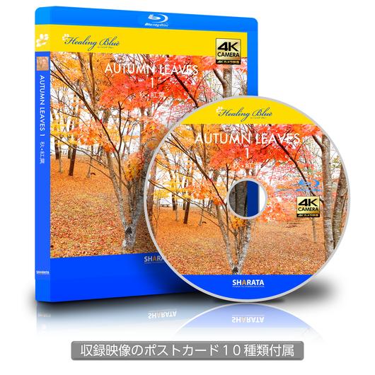 4Kカメラ映像【Healing Blue ヒーリングブルー】秋•紅葉 - 1 〈動画約60分〉ポストカード10種付属