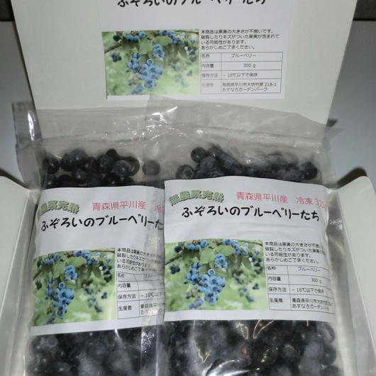 ふぞろいのブルーベリーたち 冷凍600g(300g×2袋)
