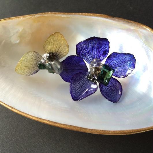紫陽花のピアス BL×GR