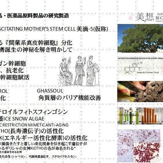 RESUSCITATING MOTHER'S STEM CELL 美滴-5