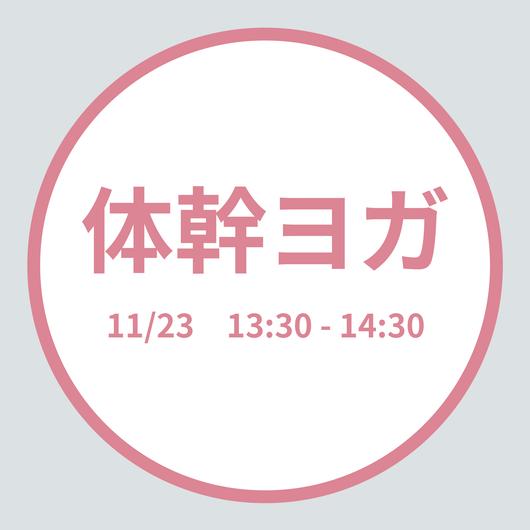 体幹ヨガ 11/23(Fri) 13:30 - 14:30