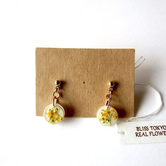 小さな黄色いかすみ草のピアス