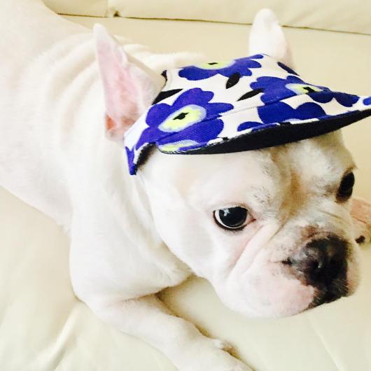 犬の帽子 B【リバーシブルタイプ】小型犬から中型犬用