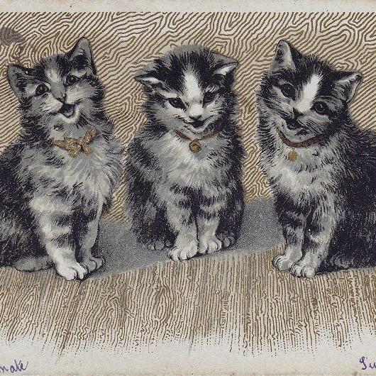 いい子に待っているポーズの3匹の猫ちゃんのポストカード