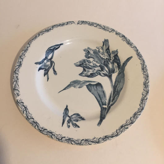 19世紀後半 リュネヴィル ディナー・プレート 平皿 チューリップ
