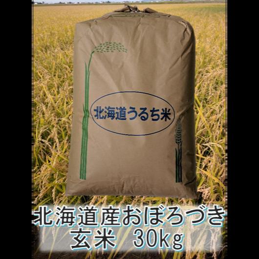 平成29年 北海道産 おぼろづき 一等米 玄米30kg