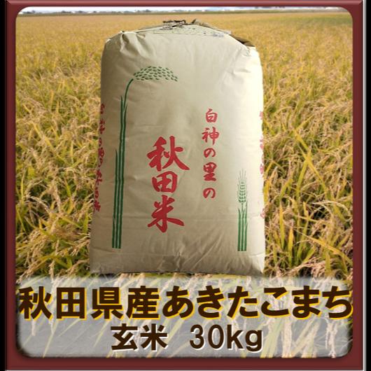 平成30年 秋田県産 あきたこまち 一等米  玄米30kg