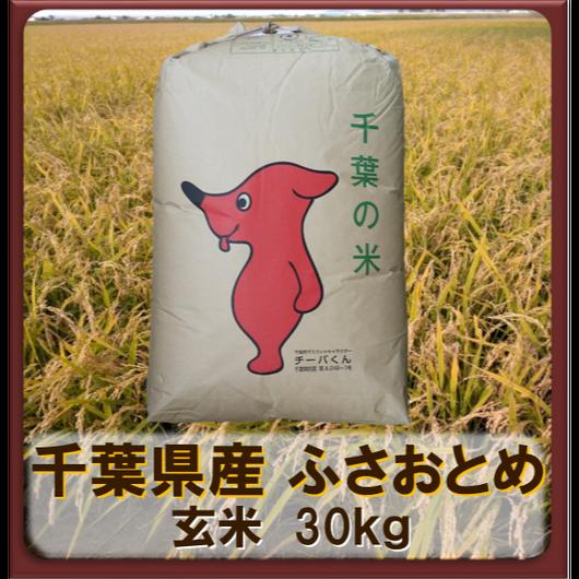 平成30年 千葉県産 ふさおとめ 一等米  玄米30kg