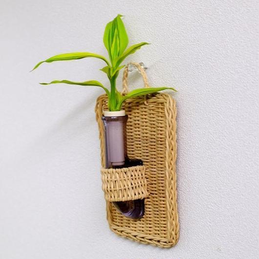 植物を壁に掛けて楽しむ セラハイト ドラセナ・サンデリアーナ ゴールド 壁掛け用容器 『Cibi (シビ) 』 手づくり製 籐製カバー付き