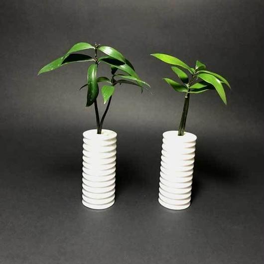 神棚・仏壇お供え用植物土なし清潔水やり簡単 【神棚・仏壇お供え用インテリア】 ナギの木 2個セット 白容器