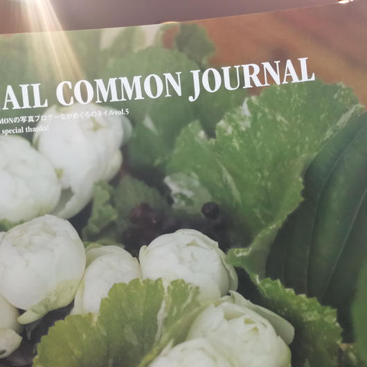 NAIL COMMON JOURNAL 2016