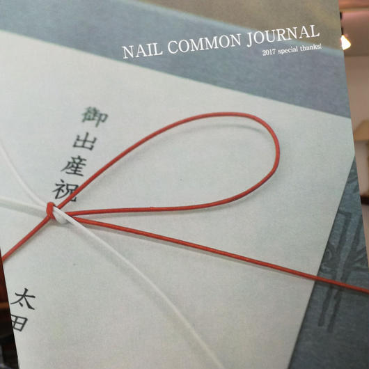 NAIL COMMON JOURNAL 2017
