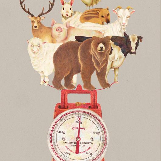 キッチンスケール animal【イラスト:A4サイズ】