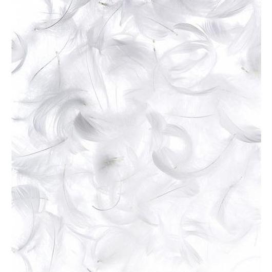 羽シャワー フェザーシャワー ホワイト 200枚 約40名分 ウエディング グッズ アイテム結婚式 二次会 パーティ たっぷり