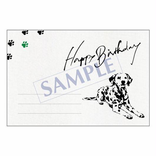 メッセージカード バースデー 14-0680 1セット(10枚)