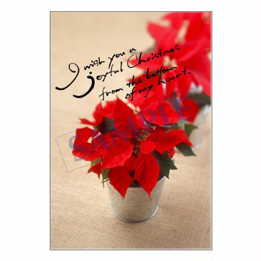 メッセージカード クリスマス 12-0614 1セット(10枚)