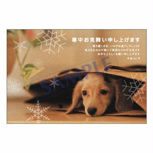 メッセージカード/季節の便り/寒中見舞い/08-0250/1 セット(10枚)