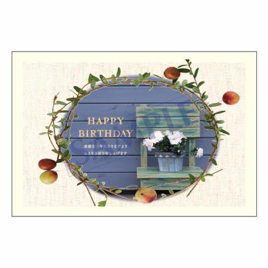 メッセージカード バースデー 11-0549 1セット(10枚)