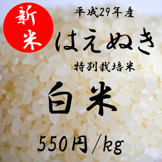 平成29年産 特別栽培米 はえぬき    【白米】 1kg