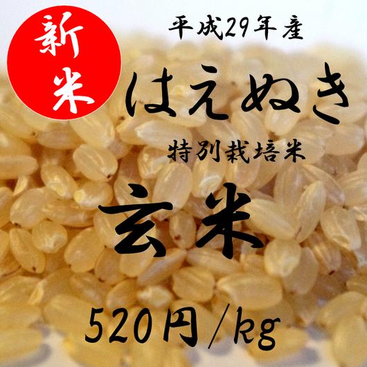 平成29年産 特別栽培米 はえぬき    【玄米】 1kg