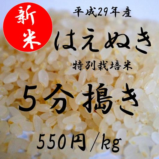 平成29年産 特別栽培米 はえぬき    【5分搗き】 1kg
