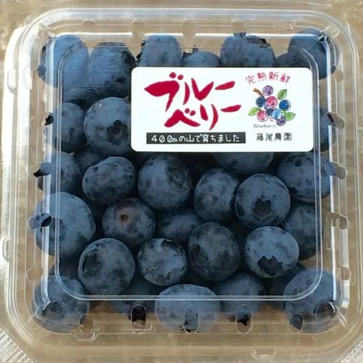徳島県美馬市特産     ブルーベリー6個セット (100g×6)