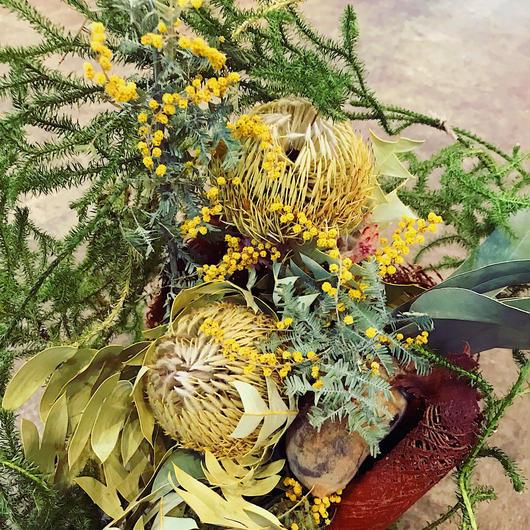 btanical arrangement