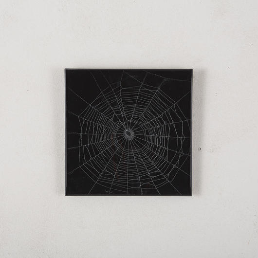 Hand paint spider web art 186