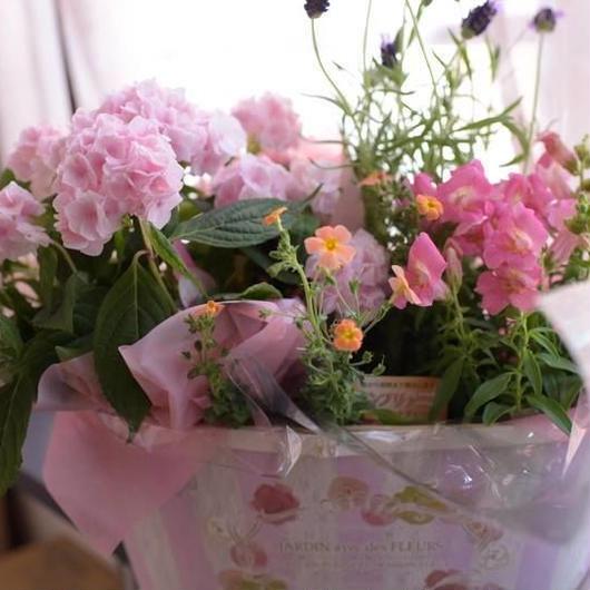 母の日 紫陽花の寄せ鉢セット (紫陽花プラス アルファ) 6480円