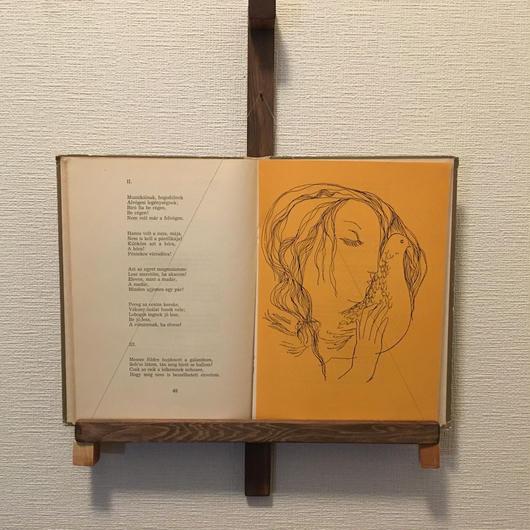 「BOOK FRAME SIZE M(壁掛けタイプ ツガ/塗装仕上げ)」