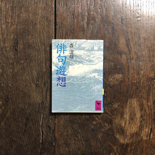 「俳句遊想」森澄雄