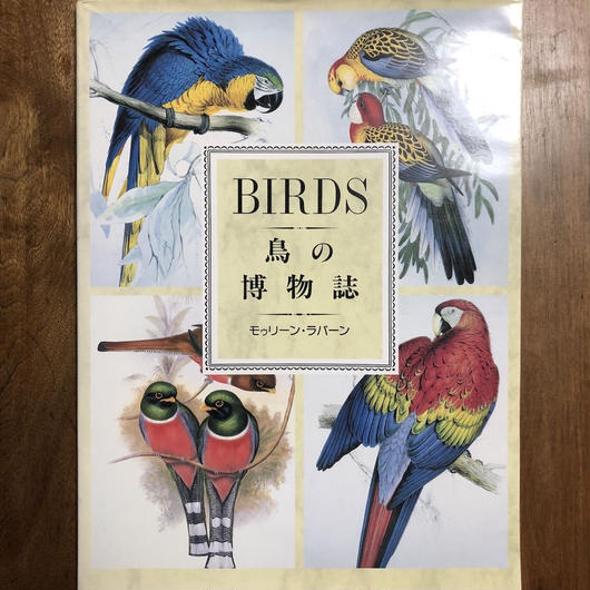 「鳥の博物誌」モゥリーン・ラバーン