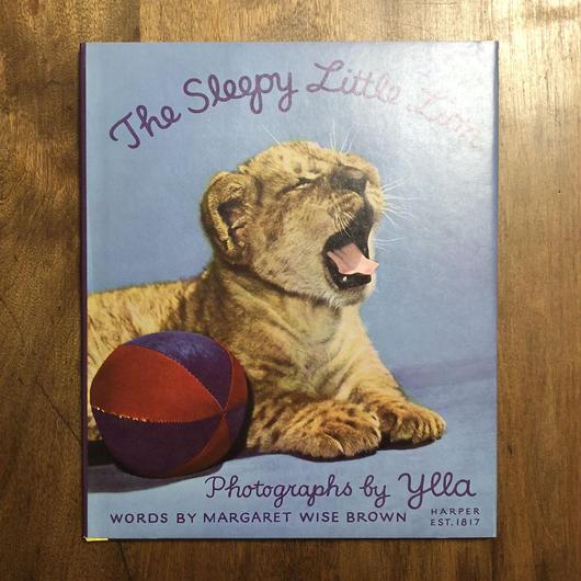 「The Sleepy Little Lion」Ylla(イーラ) 写真 Margaret Wise Brown(マーガレット・ワイズ・ブラウン)