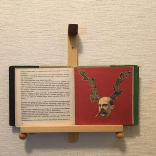 「BOOK FRAME SIZE S(壁掛けタイプ ヒノキ/オイル仕上げ/丸ツマミ)」
