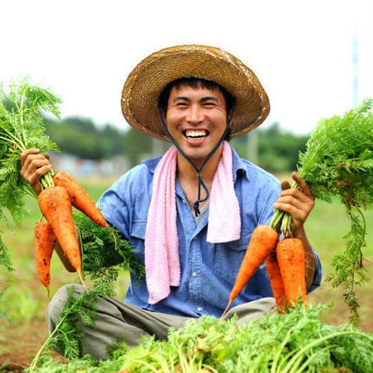 甘くて美味しい♪季節野菜の8品セット/ 千葉県