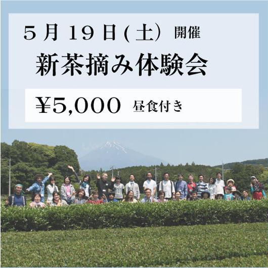 5月19日(土) 新茶摘み体験会