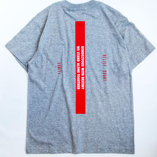 "Full Push  "" SANITY T-shirt "" Gray Body."