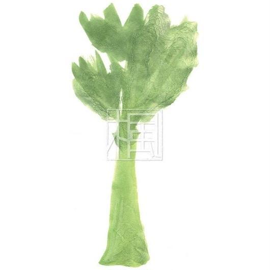 Celery [png]