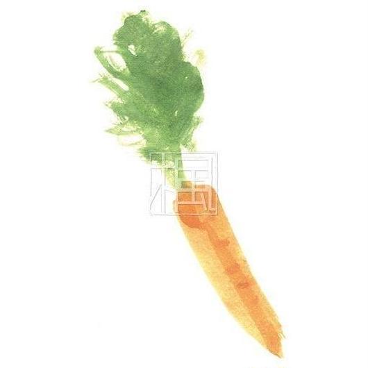 Carrot [jpg]