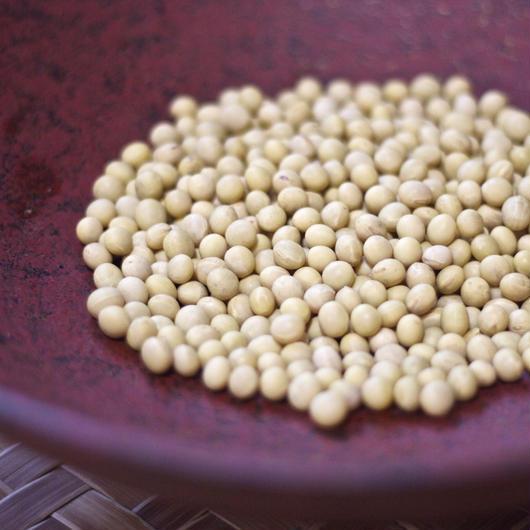 無農薬の大豆 500g  (鳥取 奥大山産) KasaRaFarm -カサラファーム-