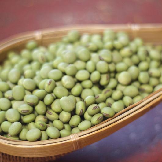 無農薬の青大豆 500g  (鳥取 奥大山産) KasaRaFarm -カサラファーム-