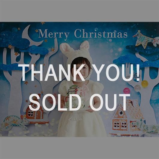 完売 ★数量&期間限定 おうち写真館+S Wonderland Christmas Mサイズ(縦841 × 横1189 mm)