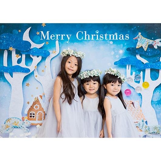 ◆数量&期間限定 おうち写真館+S Wonderland Christmas Lサイズ(縦1030 × 横1456 mm)