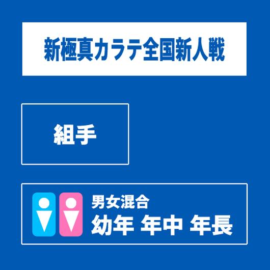 【新極真カラテ全国新人戦 】 組手 男女 幼年/年中/年長