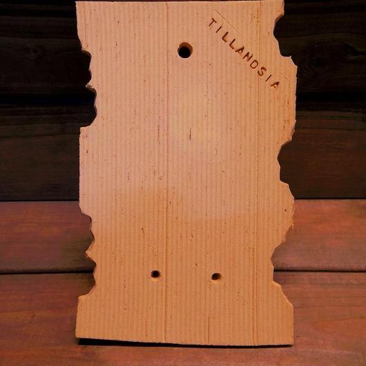 ■チランジア着生用プレート (テラコッタ製) ×1枚