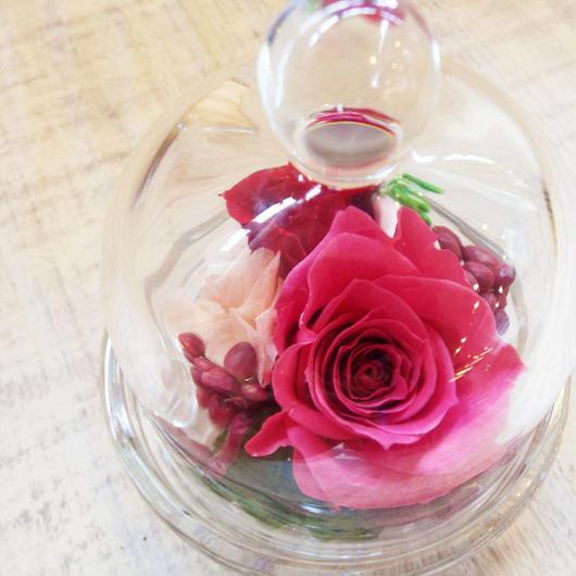 プリザーブドローズのミニガラスドーム【rose pink】