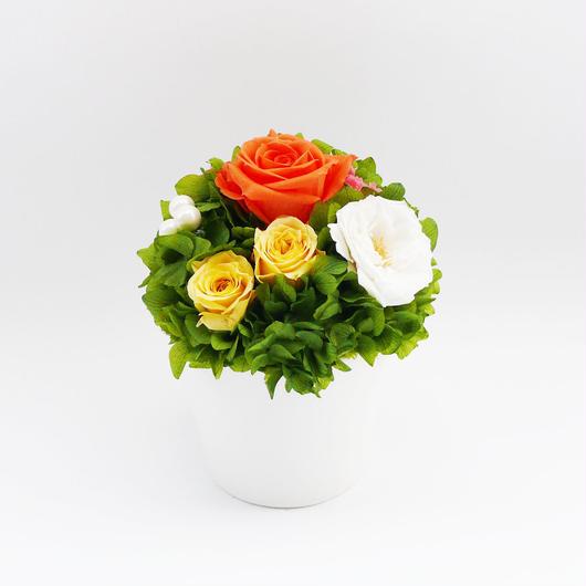 プリザーブドローズとパールのラウンドポットアレンジメント【sun orange】