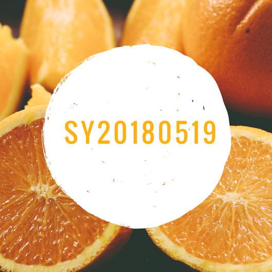 SY20180519